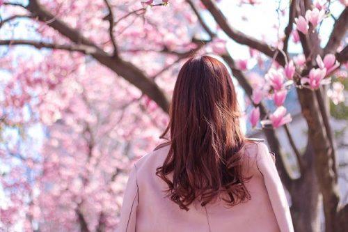 春の中洲はキャバ嬢の採用率アップ